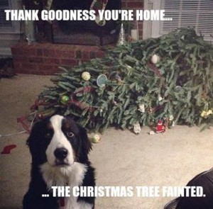thank_goodness